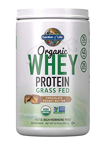 Garden of Life Certified Organic Grass Fed Whey Protein Powder - Peanut Butter, 12 Servings, 21g California Grass Fed Protein plus Probiotics, Non-GMO, Gluten Free, rBST & rBGH Free, Humane Certified