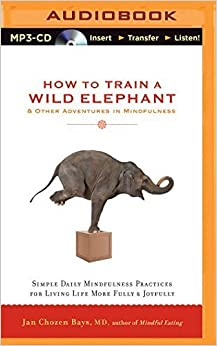 How to Train a Wild Elephant & Other Adventures in Mindfulness: Simple Daily Mindfulness Practices for Living Life More Fully & Joyfully by Jan Chozen Bays MD (2015-05-19)