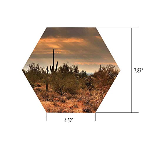 (PTANGKK Hexagon Wall Sticker,Mural Decal,Saguaro Cactus Decor,Dramatic Shady Desert View with a Storm Cloud Approaching Western Arizona Photo,Orange Green,for Home Decor 4.52x7.87 10)