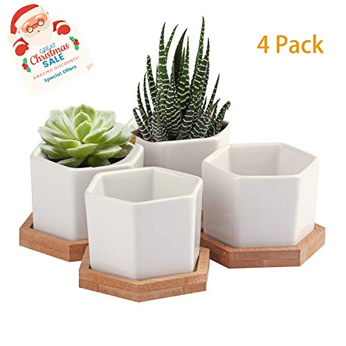Succulent Planter,OAMCEG 2.75 Inch Succulent Plant Pots,Set of 4 White Ceramic Succulent Cactus Planter Pots with Bamboo Tray(Plants NOT Included)