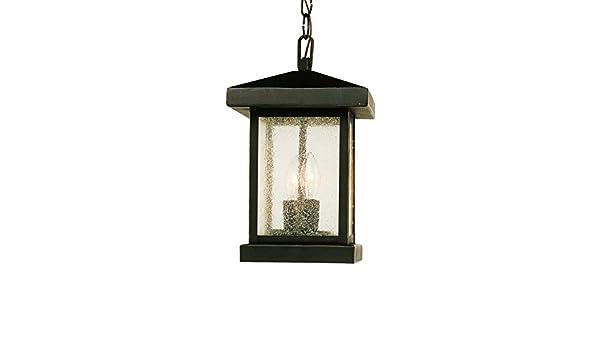 Trans Globe Lighting 45643 WB Outdoor Santa Cruz 13 Hanging Lantern Weathered Bronze Bel Air Lighting
