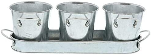 Barnyard Designs Succulent Herb Pot Planter with Tray for Indoor and Outdoor Use Multipurpose Utensil Holder Rustic Vintage Galvanized Metal Herb Plant Holder Set of 3