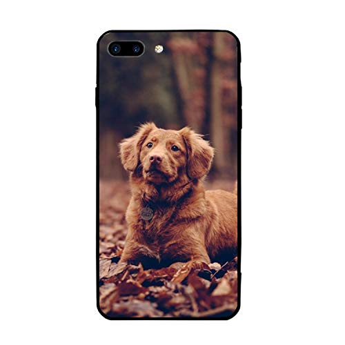 Laying Border Collie Phone 7/8 Plus Case, Gel