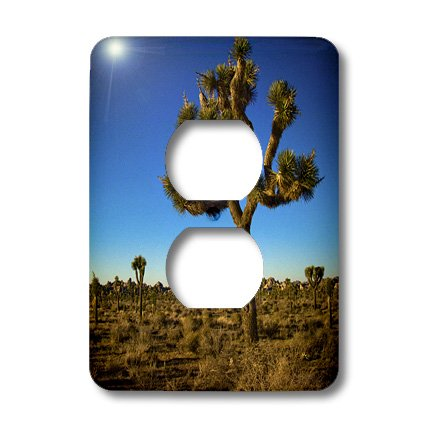 lsp_13899_6 Boehm Photography Landscape - Joshua Tree - Light Switch Covers - 2 plug outlet cover - Joshua Picture Light Plug