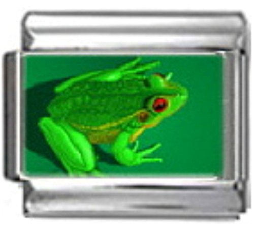 (Stylysh Charms Frog Green Amphibian Photo Italian 9mm Link AN040)
