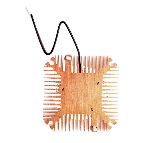SCASTOE Replacement 55mm 2 Pin 12V 0.10A PC GPU VGA Video Card Heatsink Cooling Fan