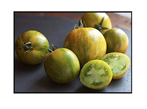Green Zebra Tomato Seeds, 200+ Premium Heirloom Seeds, Yummy Delicious! Fun Addition to Your Home Garden!, (Isla's Garden Seeds), Non GMO Organic, 90% Germination Rates, Highest Quality Seeds