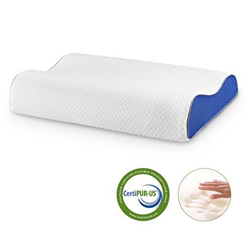 LANGRIA 21.3'' X 13.8'' Cervical Contour Memory Foam Pillow with Ergonomic Design (Ergonomic Foam)