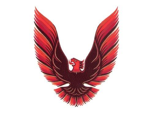 1978 1979 1980 Pontiac Firebird Trans Am Hood Bird ONLY GM Optional Decal Kit - RED ()