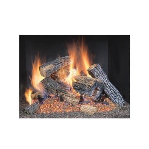 Propane Gas Fireplace Insert Amazon Com
