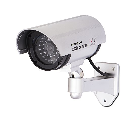 FREDI Surveillance Security Outdoor Sticker product image