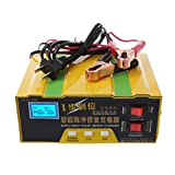 Autone 12V/24V Auto Motorcycle Battery Charger Intelligent Pulse Repair Truck Storage