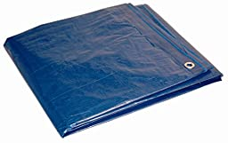 12\' x 16\' Dry Top Blue Full Size 7-mil Poly Tarp item #12163