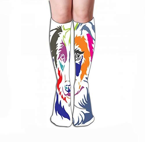 - Xunulyn Men Women Outdoor Sports High Socks Stocking Colorful Decorative Portrait Dog Border Collie illustr Colorful Decorative Portrait Dog Border Collie Tile Length 19.7