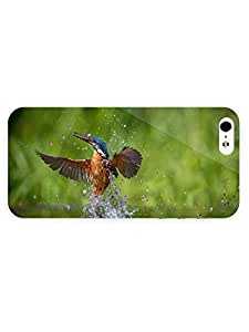 3d Full Wrap Case for iPhone 5/5s Animal Bathing Kingfisher