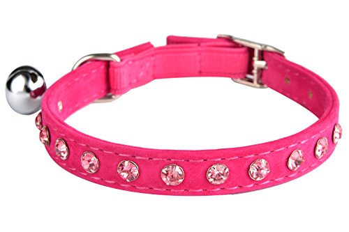 10 best cat collar pink elastic