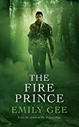 The Fire Prince: The Sentinel Mage Trilogy Book 2