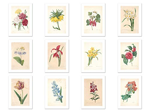 Wish Pub - Handmade Assorted Vintage Redoute Flower Painting Postcards - Set of 12 Unique Design