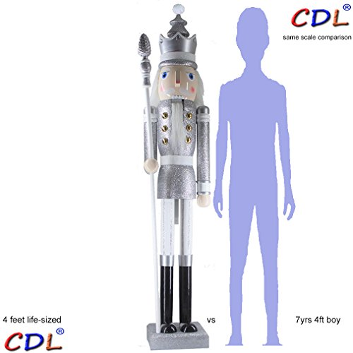 CDL 48