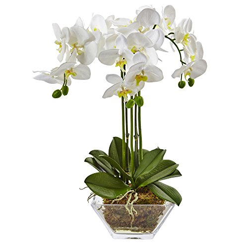 Faux Orchid Arrangement - Nearly Natural 4570 Triple Phalaenopsis Orchid in Glass Vase