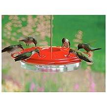 "WallEc(TM) Audubon NAH1 8-3/4"" Hummingbird Feeder 6 Ports & Built In Ant Guard"