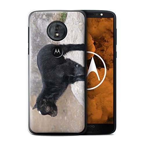 Childs Collection Billy (eSwish Phone Case/Cover for Motorola Moto G6 Play 2018 / Kid/Billy Goat Design/Cute Pet Animals Collection)