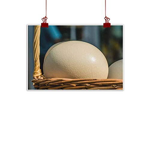 duommhome Light Luxury American Oil Painting Ostrich Eggs Canvas Wall Art 32