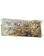 Baoblaze Long Fibered Sphagnum Moss for Soil Free Gardening, Hanging Baskets and Window Boxes
