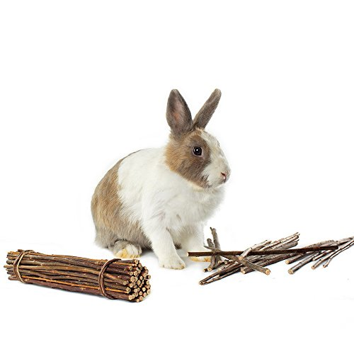 Product image of Niteangel 2-Pack of Willow Mega Munch Sticks, Small Animal Chew Treat