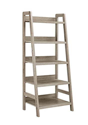 Linon Tracey Ladder Bookcase