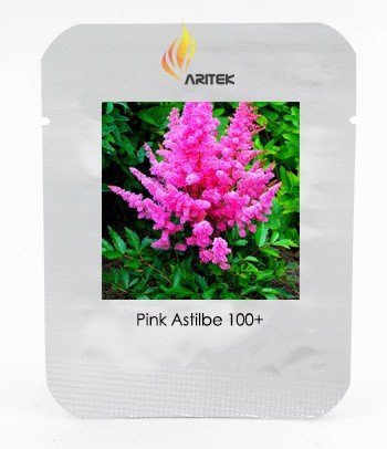 (2018 Hot Sale Younique Cerise Pink Astilbe Perennial Flower Seeds, Professional Pack, 100 Seeds/Pack, Positively Bursting with Fine)