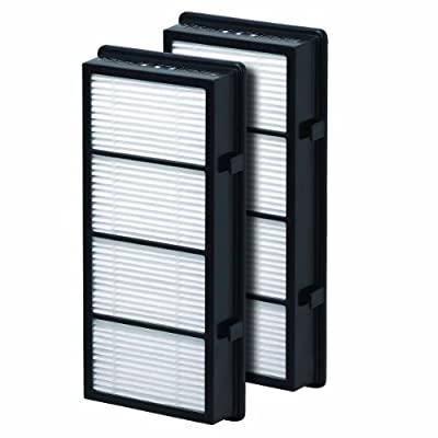 Holmes HAPF300D TRUE HEPA Replacement Filter, 2 Pack