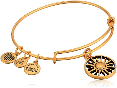 Alex and Ani Women's Rising Sun Charm Bangle Bracelet, Rafaelian Gold, Expandable made in New England