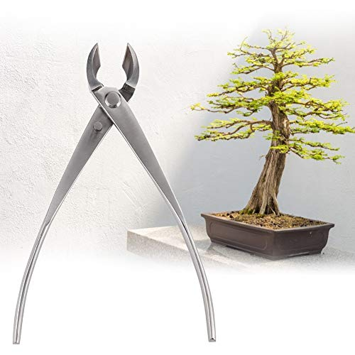 FAMKIT Department Cutter Skilled Bonsai Instruments Spherical Edge Cutter Stainless Metal Backyard Department Pliers