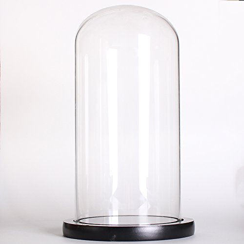 Siyaglass Clear Glass Cloche Globe Display Dome with Black Wooden Base 4.6 x 11 inch ()