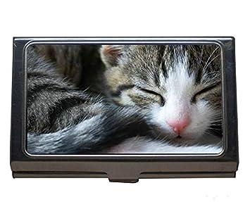 Estuche profesional para tarjetas de visita, porta animales de acero inoxidable para gatos: Amazon.es: Oficina y papelería