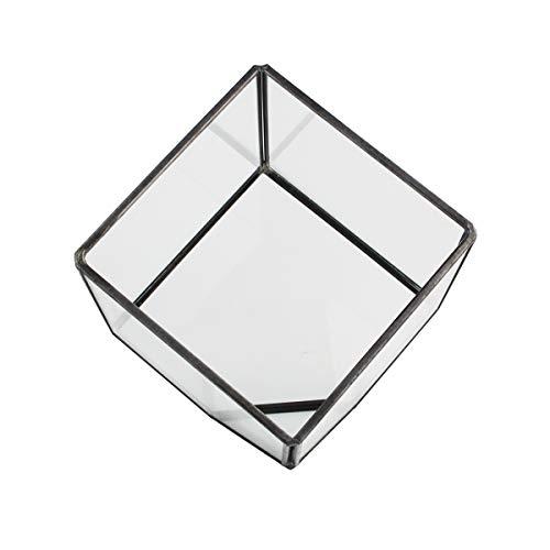 Geometric Bubble - 4 Inch Plant Geometric Terrarium, Bantoye Glass Terrarium Succulent Display Box for Small Air Plant, Black Frame
