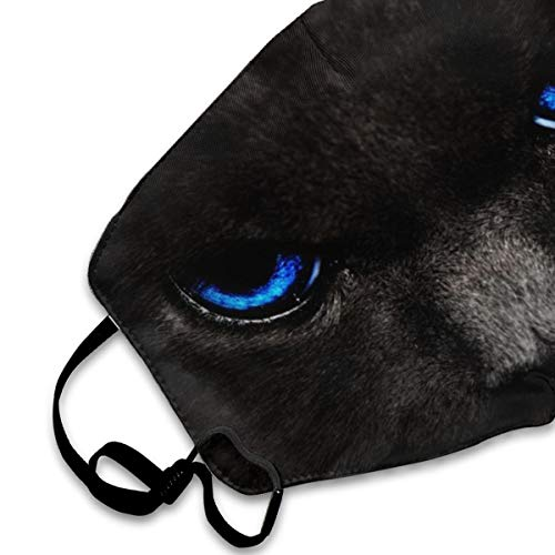 Blue Eyes Cool Cat Black Anti-Dust Face Mask For Men Womens Kids Teens,Dustproof Mouth Mask For Smoke Allergies Outdoors Festivals Sport Dust With Adjustable Ear Loops