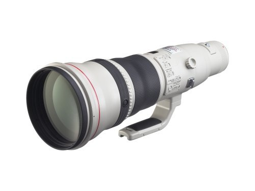 Canon EF 800mm f/5 6L IS USM Super Telephoto Lens for Canon Digital SLR Camerasの商品画像