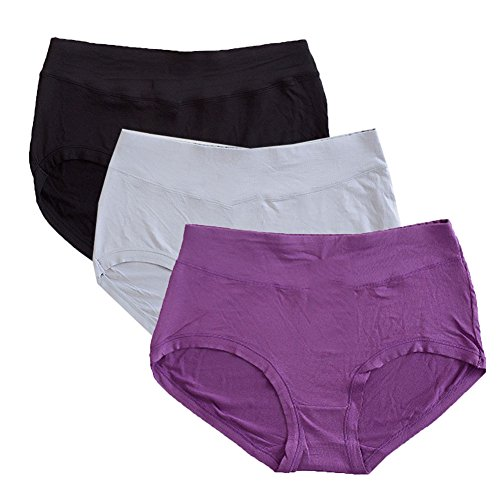 Warm Sun Women's Bamboo Viscose Fiber Multi Pack 2 Or 3 Plus Size Panties US Size S-XXXL/5-10 (10, Purple,Black,Gray)