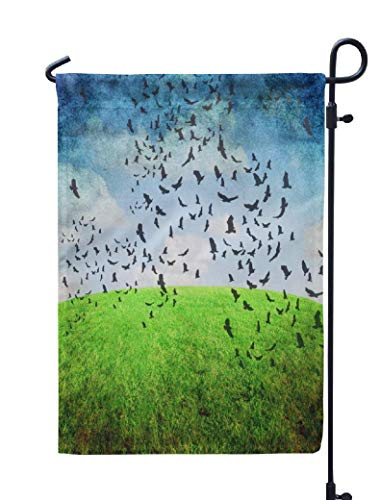 Soopat Crow Seasonal Flag, Series Sky and Grass Nature Rural Abstract Birds Blue Weatherproof Double Stitched Outdoor Decorative Flags for Garden Yard 12''L x 18''W Welcome Garden Flag