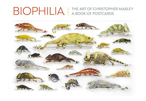 Biophilia: The Art of Christopher Marley Book of Postcards