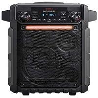 ION Pathfinder Rugged Bluetooth Portable Speaker - Black