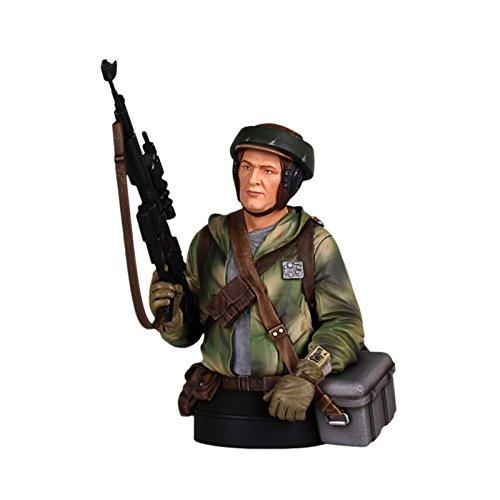 Gentle Giant Endor Trooper Mini Action Figure - Edition Helmet Stormtrooper Limited