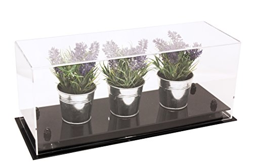 Versatile Deluxe Clear Acrylic Display Case - Large Rectangle Box with Black Risers 17
