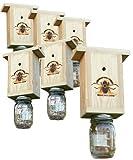 Set of 6 Premium USA Made Carpenter Bee Traps
