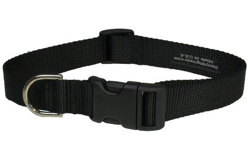 Sassy Dog Wear 13-20-Inch Black Nylon Webbing Dog Collar, Medium