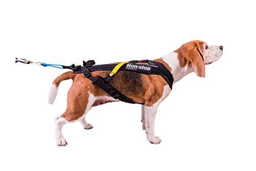 Non- Stop- Dogwear Leash for Dogs by Non- Stop- Dogwear (Image #1)