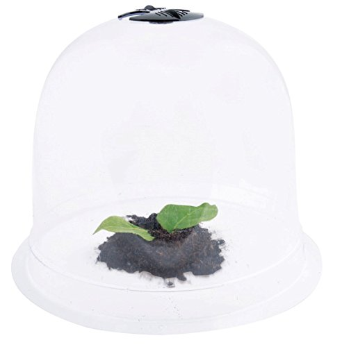 Esschert Design Plastic Garden Cloches with Pegs by Esschert Design (Image #1)