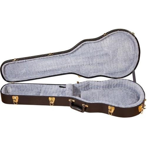 Gretsch Solid Guitar (Gretsch G6238FT Electromatic Solid Body Guitar Case)